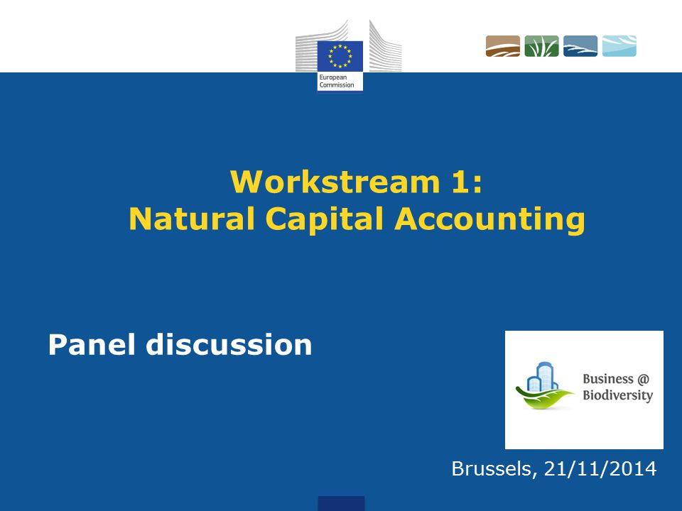 Workstream 1: Natural Capital Accounting Brussels, 21/11/2014 Panel discussion