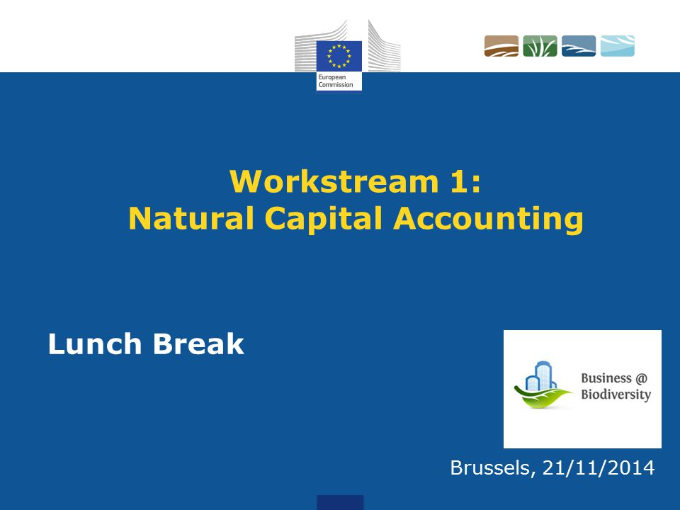 Workstream 1: Natural Capital Accounting Brussels, 21/11/2014 Lunch Break