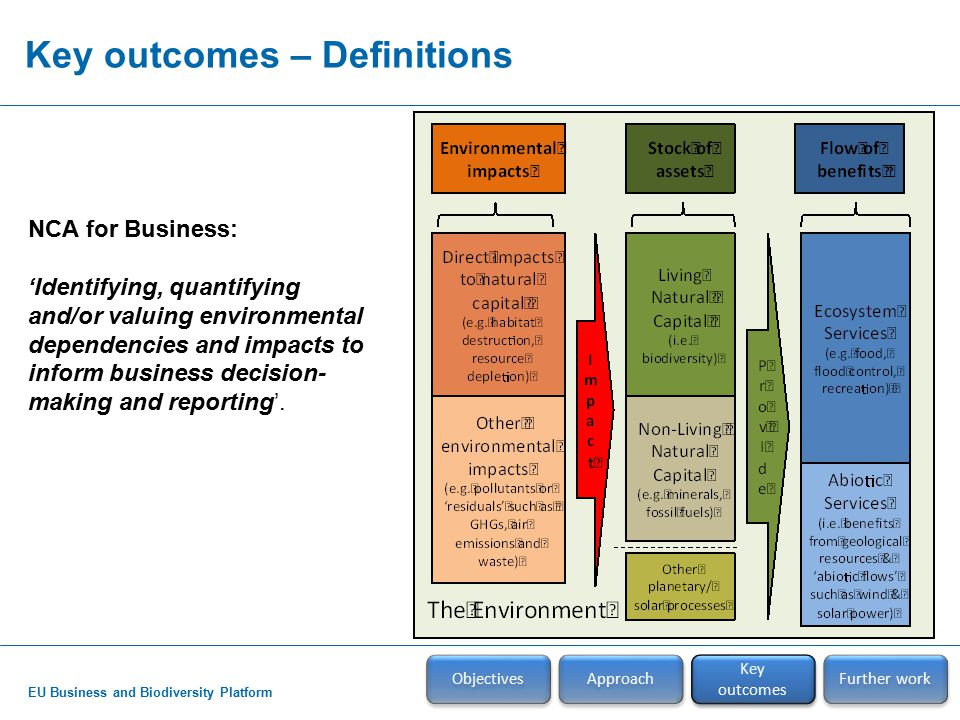 EU Business and Biodiversity Platform Key outcomes – Definitions Objectives Approach Key outcomes Further work NCA for Business: 'Identifying, quantifying and/or valuing environmental dependencies and impacts to inform business decision- making and reporting'.