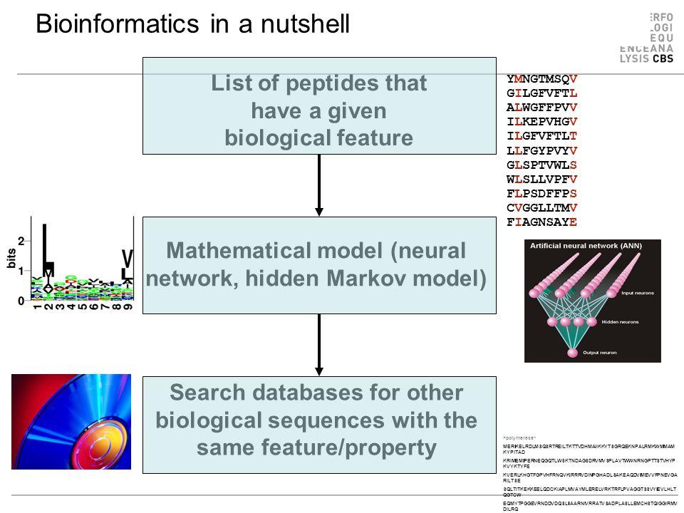 Bioinformatics in a nutshell List of peptides that have a given biological feature Mathematical model (neural network, hidden Markov model) Search databases for other biological sequences with the same feature/property YMNGTMSQV GILGFVFTL ALWGFFPVV ILKEPVHGV ILGFVFTLT LLFGYPVYV GLSPTVWLS WLSLLVPFV FLPSDFFPS CVGGLLTMV FIAGNSAYE >polymerase MERIKELRDLMSQSRTREILTKTTVDHMAIIKKYTSGRQEKNPALRMKWMMAM KYPITAD KRIMEMIPERNEQGQTLWSKTNDAGSDRVMVSPLAVTWWNRNGPTTSTVHYP KVYKTYFE KVERLKHGTFGPVHFRNQVKIRRRVDINPGHADLSAKEAQDVIMEVVFPNEVGA RILTSE SQLTITKEKKEELQDCKIAPLMVAYMLERELVRKTRFLPVAGGTSSVYIEVLHLT QGTCW EQMYTPGGEVRNDDVDQSLIIAARNIVRRATVSADPLASLLEMCHSTQIGGIRMV DILRQ NPTEEQAVDICKAAMGLRISSSFSFGGFTFKRTNGSSVKKEEEVLTGNLQTLKIK VHEGY EEFTMVGRRATAILRKATRRLIQLIVSGRDEQSIAEAIIVAMVFSQEDCMIKAVRG DLNF...