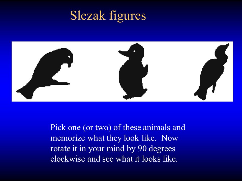 Slezak figures rotated 90 o
