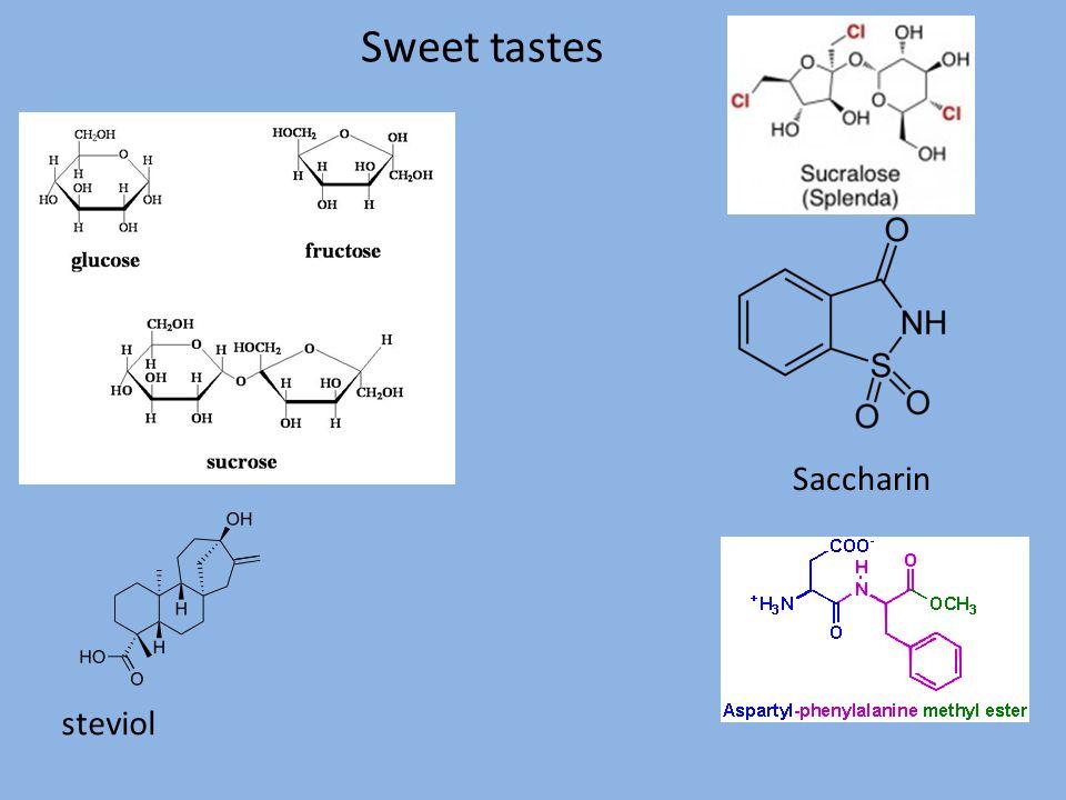 Sweet tastes Saccharin steviol