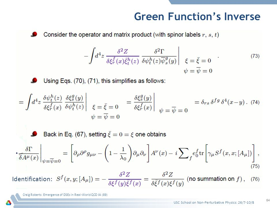 Green Function's Inverse USC School on Non-Perturbative Physics: 26/7-10/8 Craig Roberts: Emergence of DSEs in Real-World QCD IA (89) 64 Identificatio