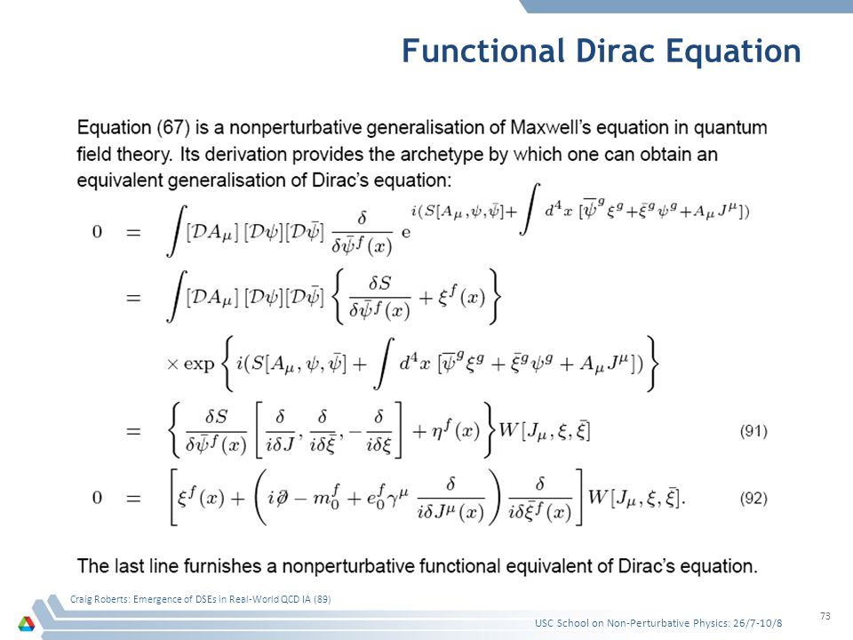 Functional Dirac Equation USC School on Non-Perturbative Physics: 26/7-10/8 Craig Roberts: Emergence of DSEs in Real-World QCD IA (89) 73