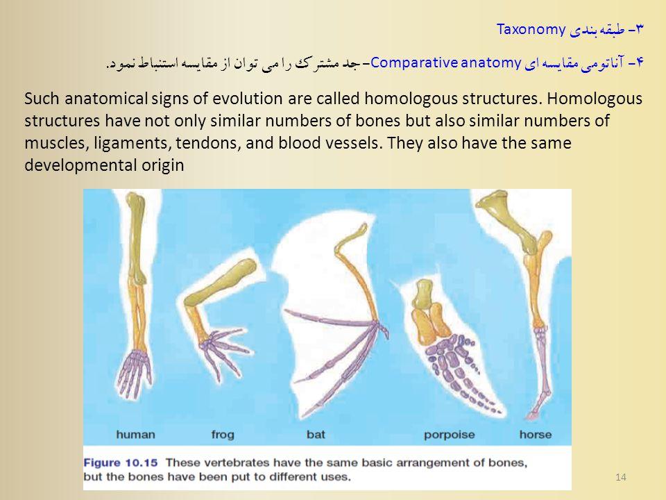 14 3 - طبقه بندی Taxonomy 4 - آناتومی مقایسه ای Comparative anatomy - جد مشترک را می توان از مقایسه استنباط نمود.