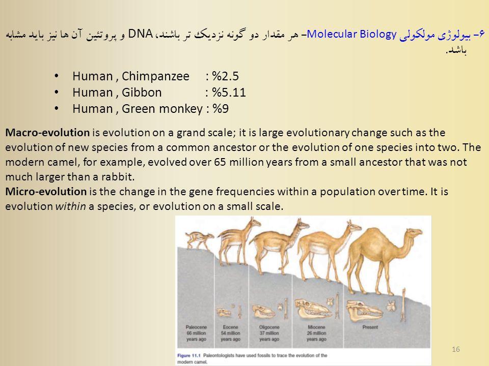 16 6 - بیولوژی مولکولی Molecular Biology - هر مقدار دو گونه نزدیک تر باشند، DNA و پروتئین آن ها نیز باید مشابه باشد.