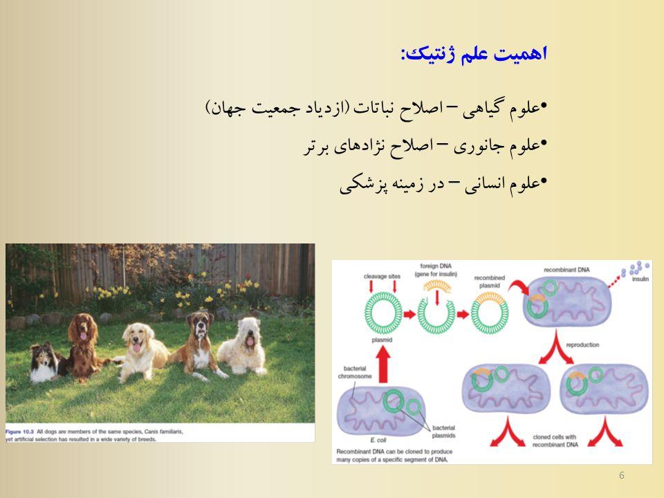 6 اهمیت علم ژنتیک : علوم گیاهی – اصلاح نباتات ( ازدیاد جمعیت جهان ) علوم جانوری – اصلاح نژادهای برتر علوم انسانی – در زمینه پزشکی