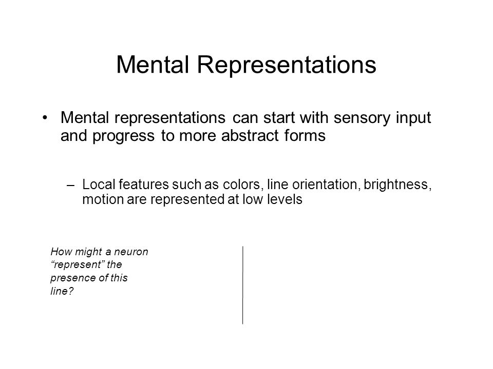 Mental Representations Mental representations can start with sensory input and progress to more abstract forms –Local features such as colors, line orientation, brightness, motion are represented at low levels How might a neuron represent the presence of this line