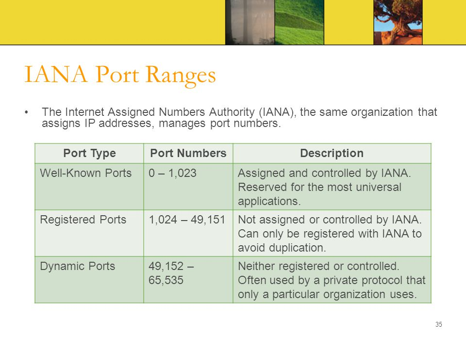 IANA Port Ranges The Internet Assigned Numbers Authority (IANA), the same organization that assigns IP addresses, manages port numbers. 35 Port TypePo