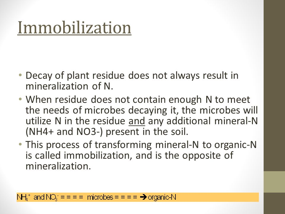 Immobilization Decay of plant residue does not always result in mineralization of N.