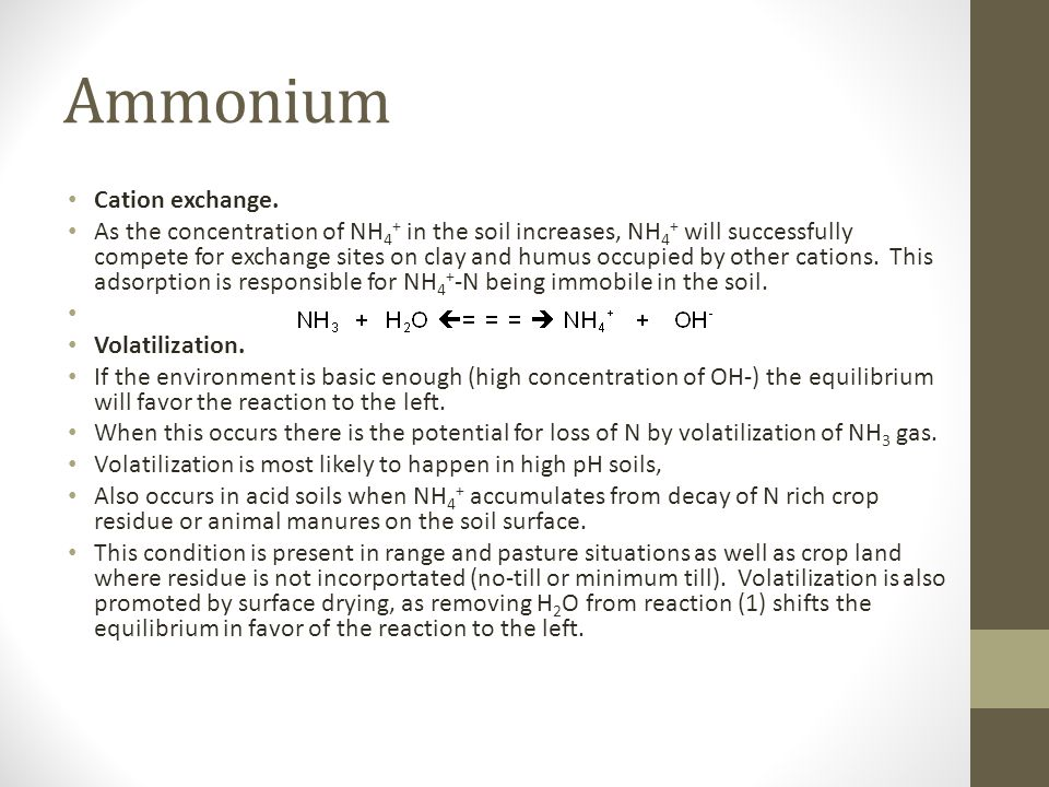 Ammonium Cation exchange. As the concentration of NH 4 + in the soil increases, NH 4 + will successfully compete for exchange sites on clay and humus