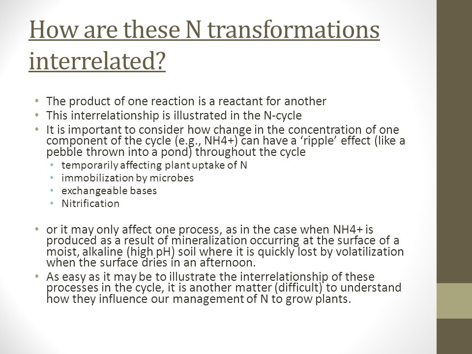 How are these N transformations interrelated? The product of one reaction is a reactant for another This interrelationship is illustrated in the N-cyc