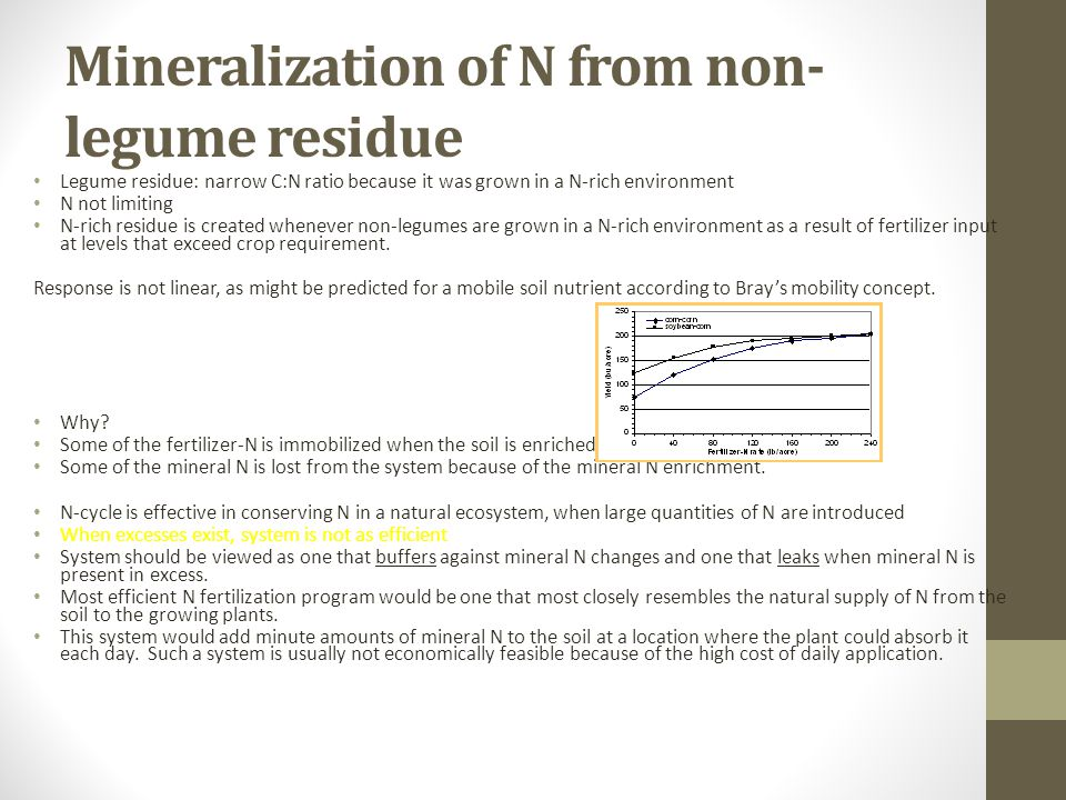Legume residue: narrow C:N ratio because it was grown in a N-rich environment N not limiting N-rich residue is created whenever non-legumes are grown