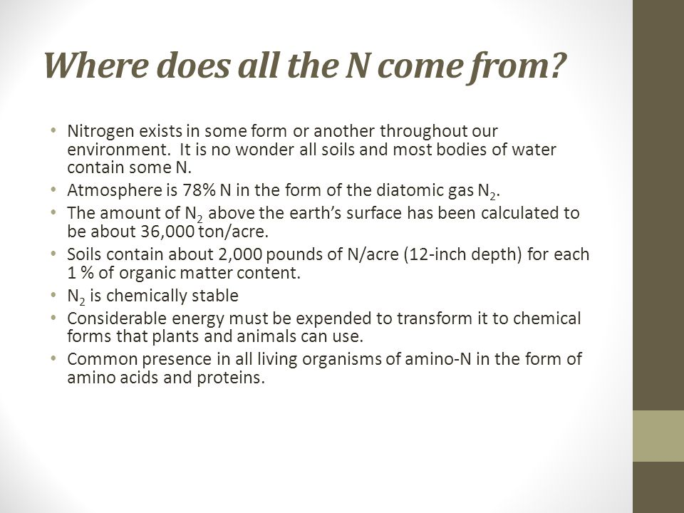 Where does all the N come from. Nitrogen exists in some form or another throughout our environment.