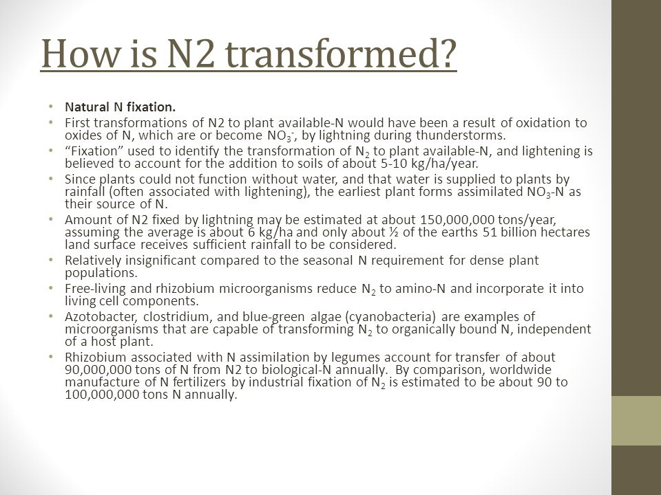 How is N2 transformed? Natural N fixation. First transformations of N2 to plant available-N would have been a result of oxidation to oxides of N, whic