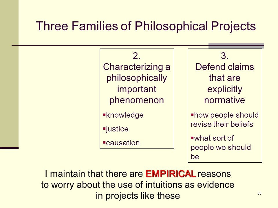 38 Three Families of Philosophical Projects 2.