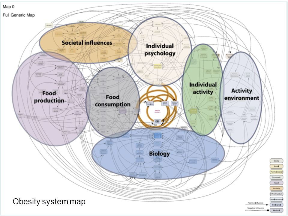 Nutritional Epidemiology Group Centre for Epidemiology and Biostatistics Obesity system map