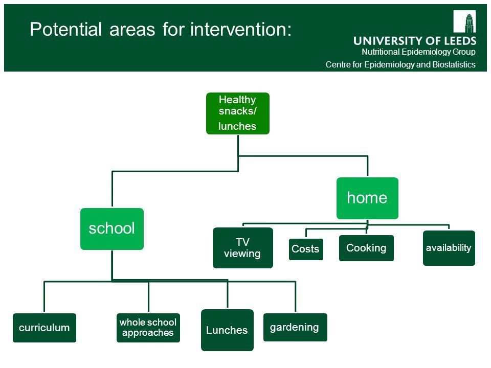 Nutritional Epidemiology Group Centre for Epidemiology and Biostatistics Potential areas for intervention: Healthy snacks/ lunches school curriculum whole school approaches Lunches gardening home TV viewing Costs Cooking availability