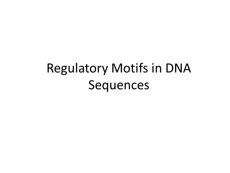 Regulatory Motifs in DNA Sequences