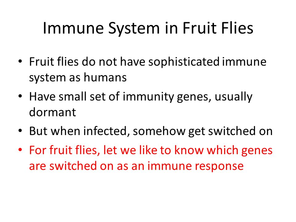 Immune System in Fruit Flies Fruit flies do not have sophisticated immune system as humans Have small set of immunity genes, usually dormant But when infected, somehow get switched on For fruit flies, let we like to know which genes are switched on as an immune response