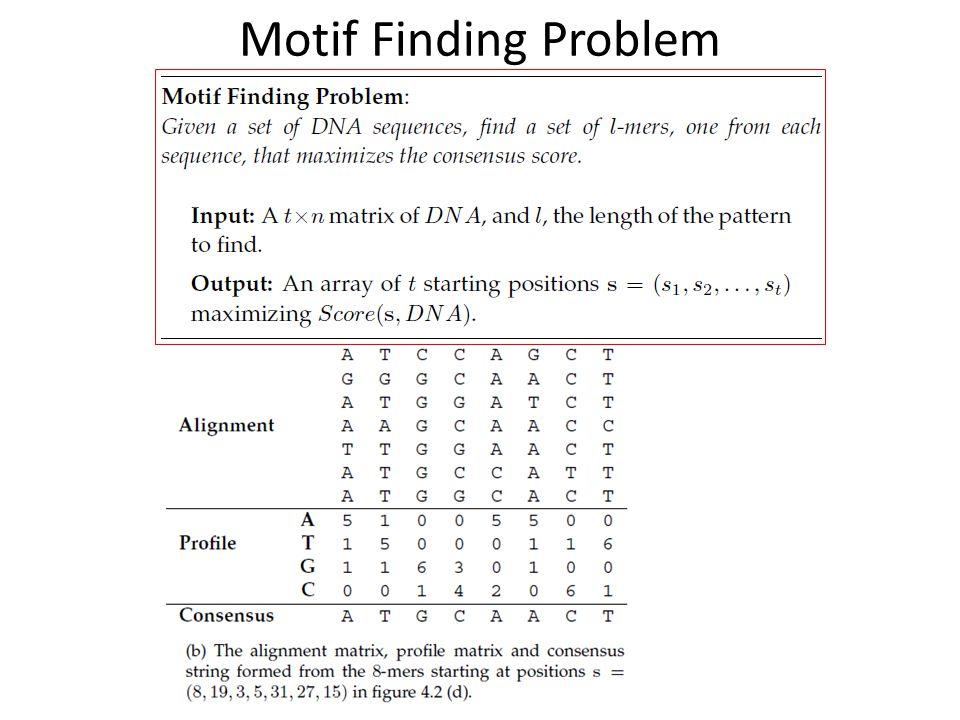 Motif Finding Problem