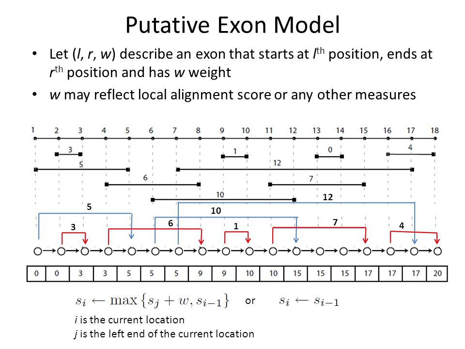 Putative Exon Model Let (l, r, w) describe an exon that starts at l th position, ends at r th position and has w weight w may reflect local alignment score or any other measures or i is the current location j is the left end of the current location 3 5 6 1 10 7 12 4