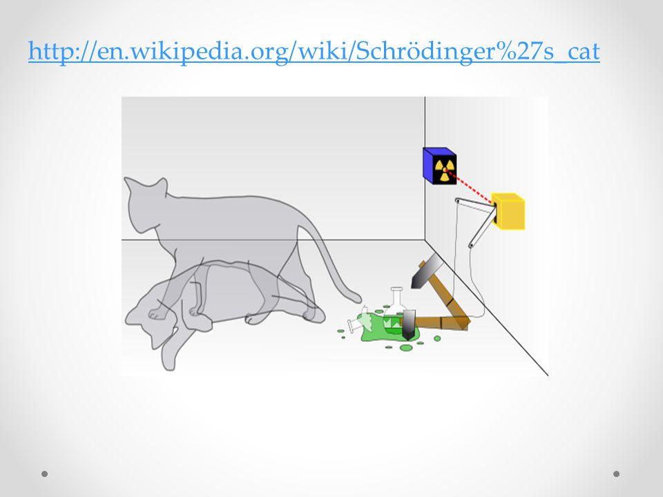 http://en.wikipedia.org/wiki/Schrödinger%27s_cat