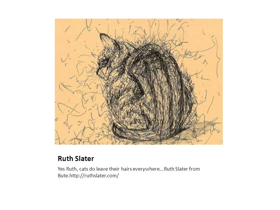 Ruth Slater Yes Ruth, cats do leave their hairs everywhere...Ruth Slater from Bute.http://ruthslater.com/