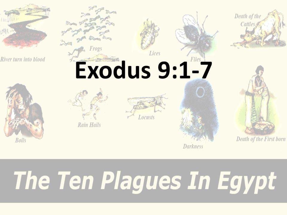 Exodus 9:1-7