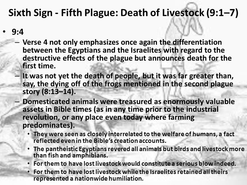 Sixth Sign - Fifth Plague: Death of Livestock (9:1–7) 9:5 – God's verbally setting a time for a localized event (not merely a plague) to happen has no parallel elsewhere in Scripture, and the mention here of the expression the L ORD set a time presumably is included as a contrast with the wording in the second plague account (7:25–8:15), where Moses specifically allowed Pharaoh to set the time ( I leave to you the honor of setting the time, 8:9).