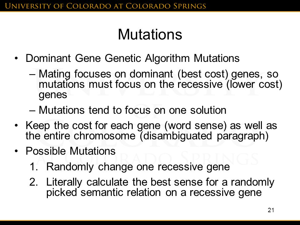 Mutations Dominant Gene Genetic Algorithm Mutations –Mating focuses on dominant (best cost) genes, so mutations must focus on the recessive (lower cost) genes –Mutations tend to focus on one solution Keep the cost for each gene (word sense) as well as the entire chromosome (disambiguated paragraph) Possible Mutations 1.Randomly change one recessive gene 2.Literally calculate the best sense for a randomly picked semantic relation on a recessive gene 21