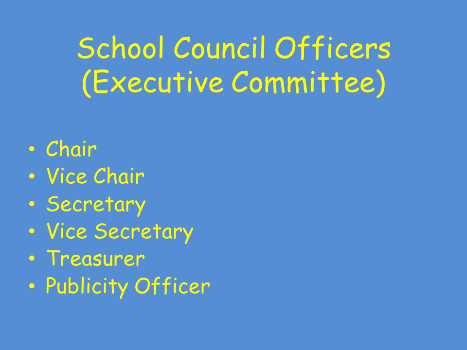 School Council Officers (Executive Committee) Chair Vice Chair Secretary Vice Secretary Treasurer Publicity Officer