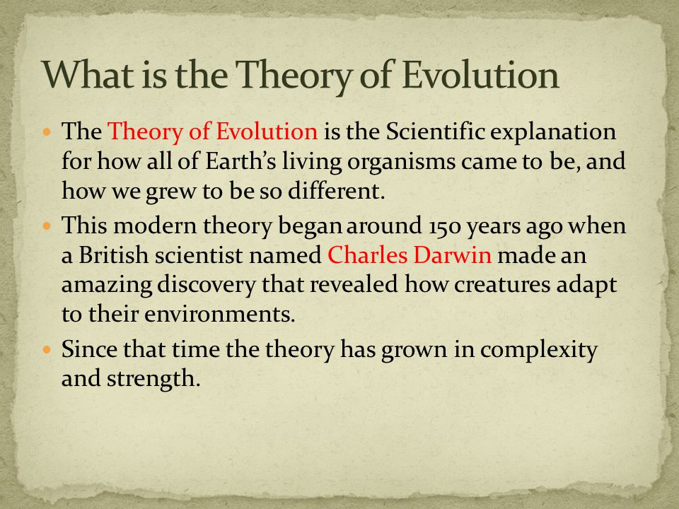 The Theory of Evolution is the Scientific explanation for how all of Earth's living organisms came to be, and how we grew to be so different.
