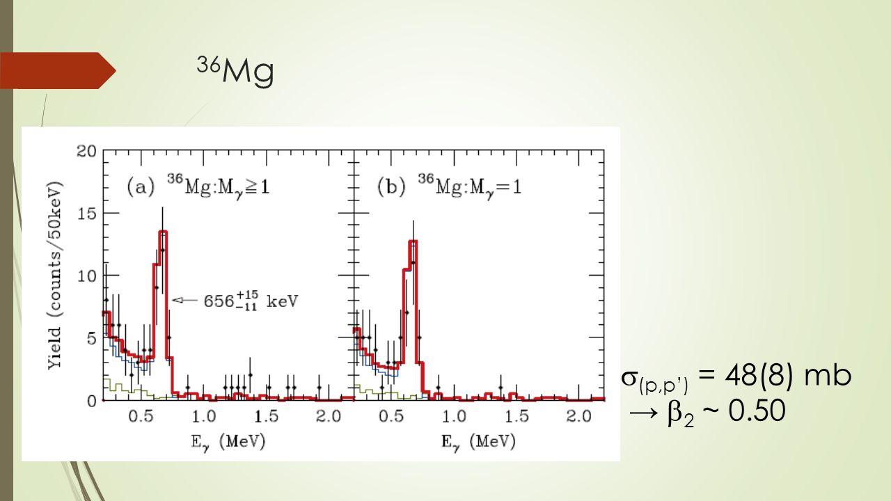 36 Mg  (p,p') = 48(8) mb →  2 ~ 0.50