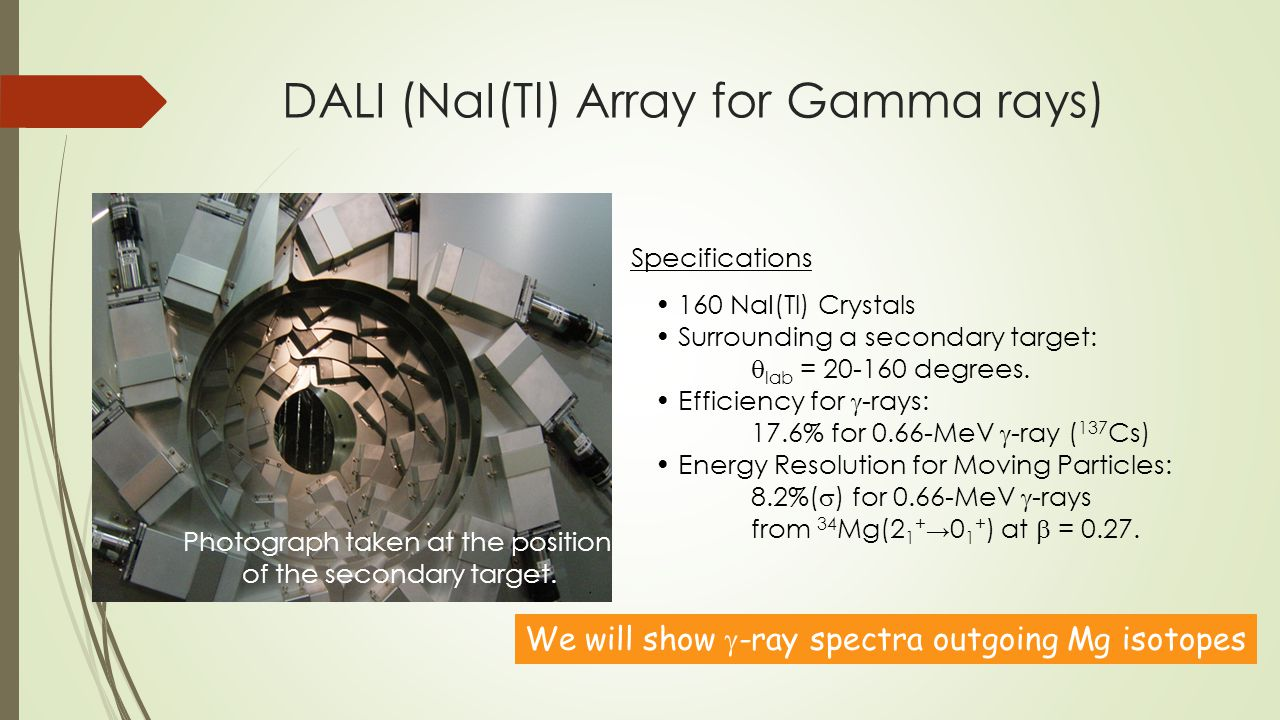 DALI (NaI(Tl) Array for Gamma rays) Photograph taken at the position of the secondary target.
