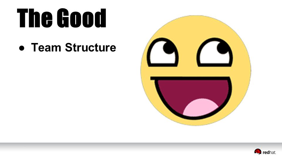 ●Team Structure