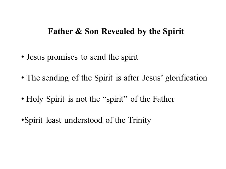 Father & Son Revealed by the Spirit Jesus promises to send the spirit The sending of the Spirit is after Jesus' glorification Holy Spirit is not the ""