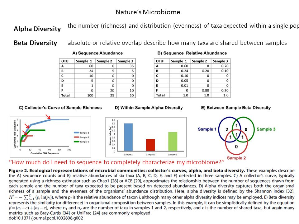 Nature's Microbiome the number (richness) and distribution (evenness) of taxa expected within a single population Alpha Diversity Beta Diversity ''How much do I need to sequence to completely characterize my microbiome '' absolute or relative overlap describe how many taxa are shared between samples
