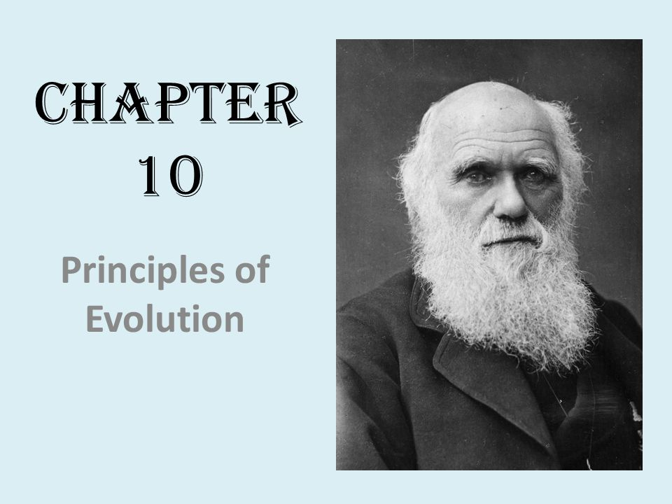 Section 10.1: Early Ideas About Evolution Evolution- the process of change over time by which descendents come to differ from their ancestors.