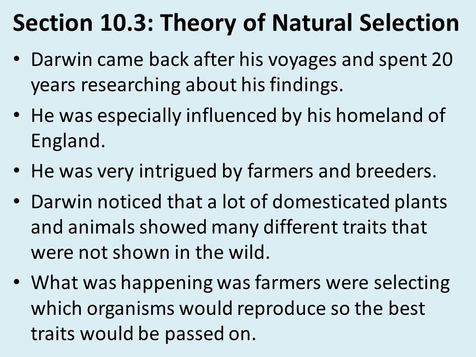 Section 10.3: Theory of Natural Selection Darwin came back after his voyages and spent 20 years researching about his findings. He was especially infl
