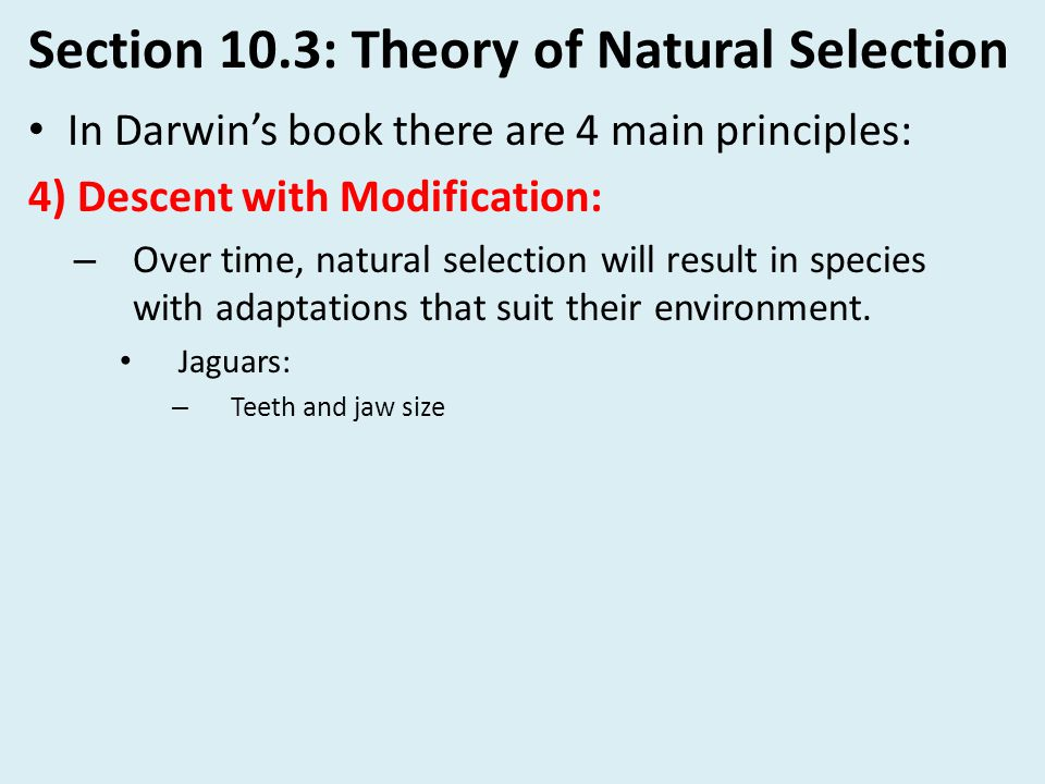Section 10.3: Theory of Natural Selection In Darwin's book there are 4 main principles: 4) Descent with Modification: – Over time, natural selection w