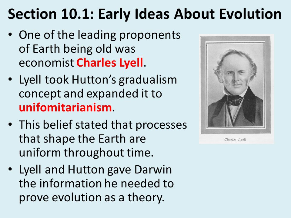 Section 10.3: Theory of Natural Selection Another important piece of information that Darwin used came from an English Economist Thomas Malthus.