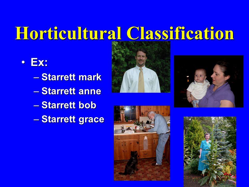 Horticultural Classification Ex:Ex: –Starrett mark –Starrett anne –Starrett bob –Starrett grace
