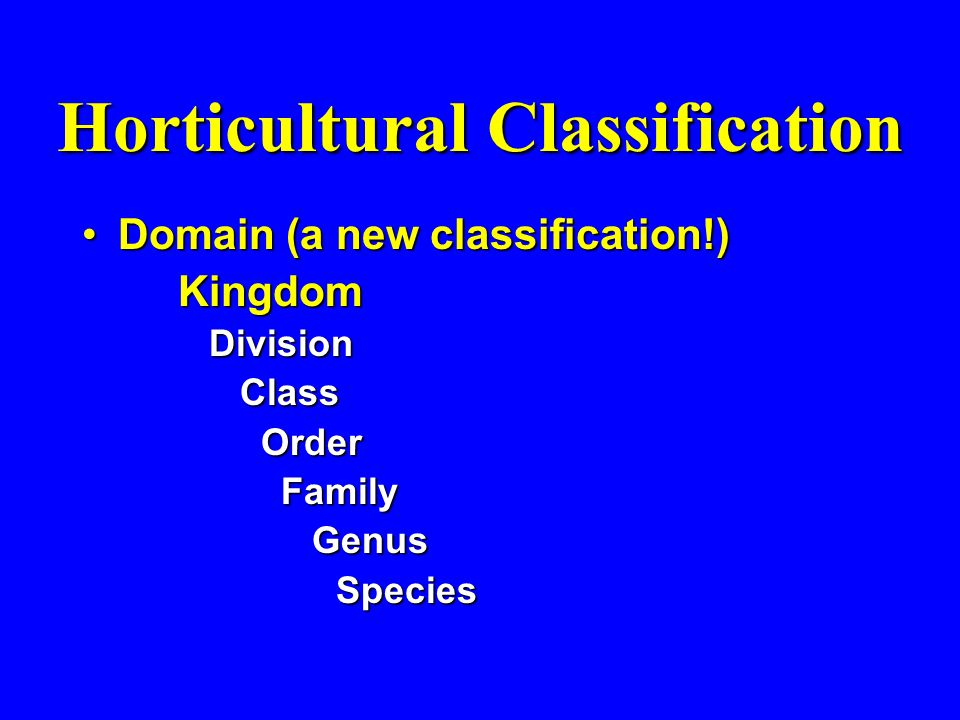Horticultural Classification Domain (a new classification!)Domain (a new classification!)Kingdom Division Division Class Class Order Order Family Fami