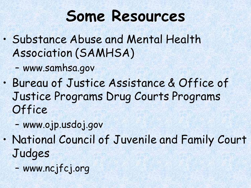 Some Resources Substance Abuse and Mental Health Association (SAMHSA) –www.samhsa.gov Bureau of Justice Assistance & Office of Justice Programs Drug Courts Programs Office –www.ojp.usdoj.gov National Council of Juvenile and Family Court Judges –www.ncjfcj.org