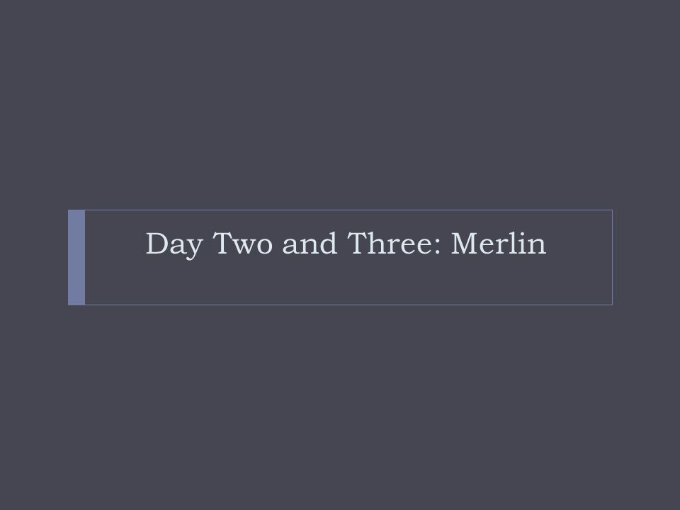 Day Two and Three: Merlin