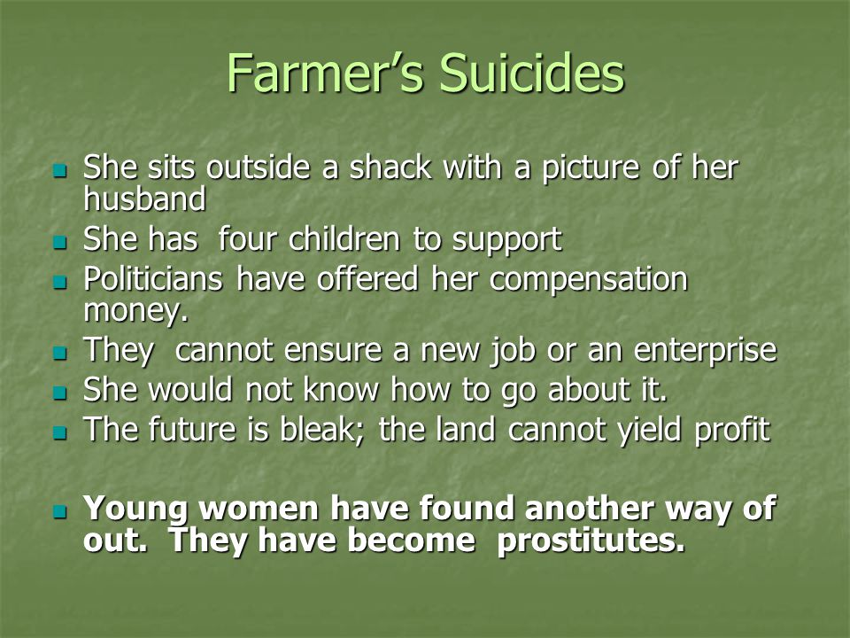 Farmer's Suicides She sits outside a shack with a picture of her husband She sits outside a shack with a picture of her husband She has four children to support She has four children to support Politicians have offered her compensation money.