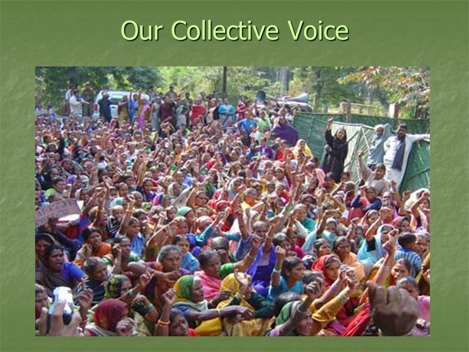 Our Collective Voice