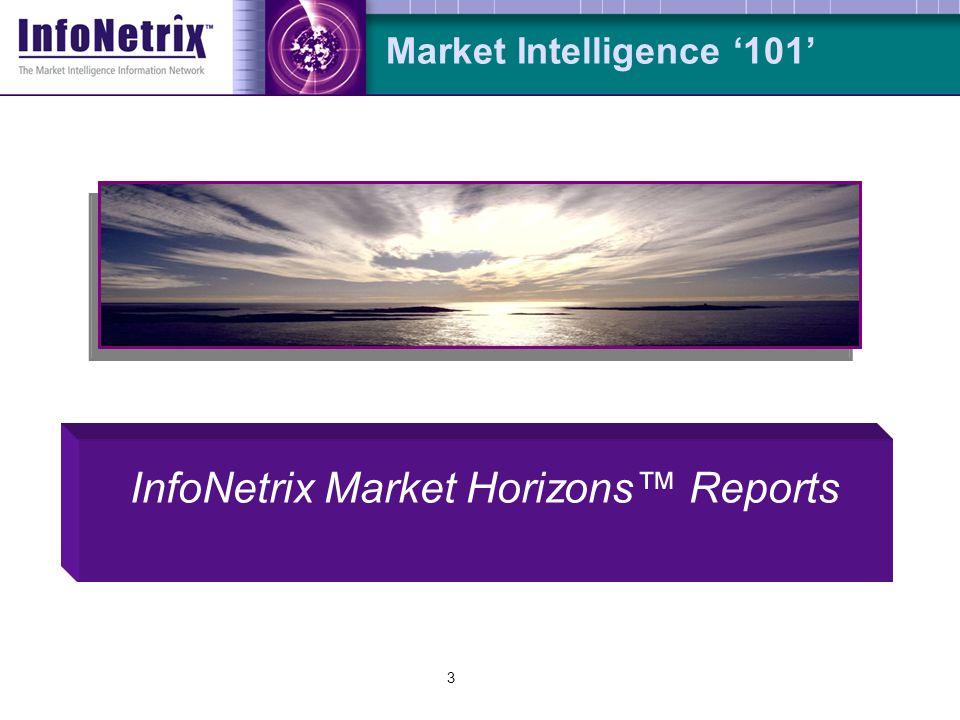3 Market Intelligence '101' InfoNetrix Market Horizons™ Reports