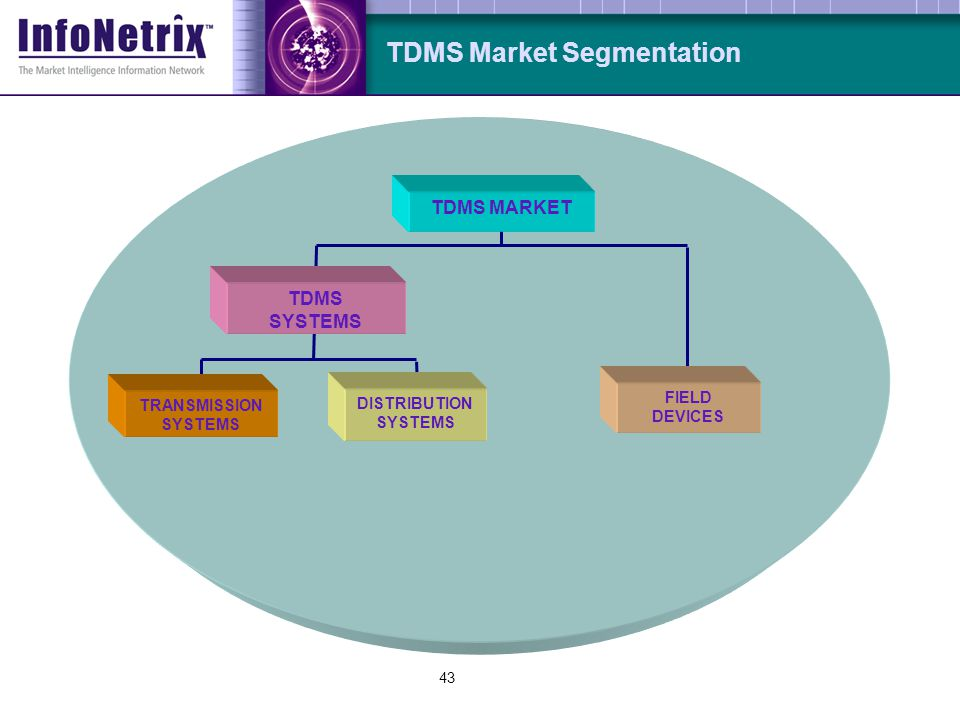 43 FIELD DEVICES TDMS SYSTEMS DISTRIBUTION SYSTEMS TRANSMISSION SYSTEMS TDMS Market Segmentation TDMS MARKET